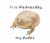 wednesday-frog-png-1.png